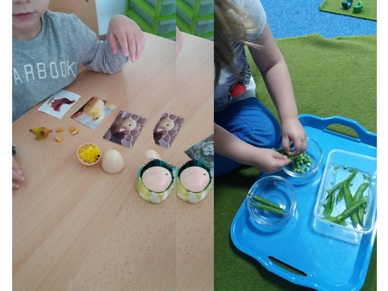 1250 din.umesto 2000 din za mesec dana radionice u Montessori dečjoj kući